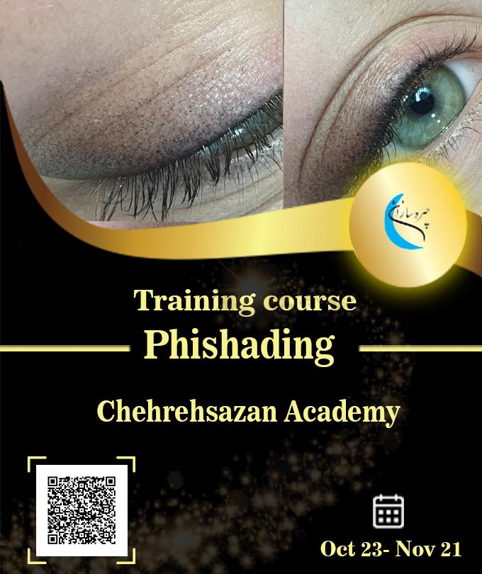Micro Shading training course, Micro Shading training, Micro Shading training certificate, Micro Shading certificate