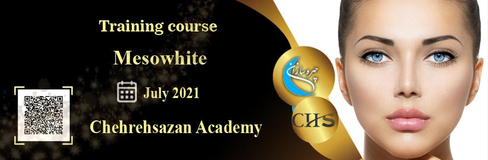 Mesowhite training course, Mesowhite training, virtual Mesowhite course, Mesowhite training course certificate, professional Mesowhite training technical certificate, Mesowhite training video