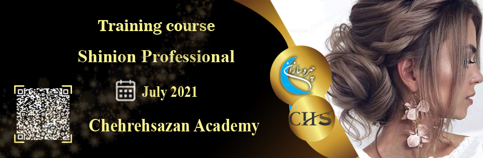 Shinion training course, Shinion training, virtual Shinion course, Shinion training course certificate, professional Shinion training technical certificate, Shinion training video